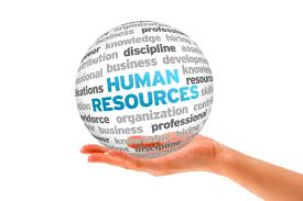 graduate school essay human resources